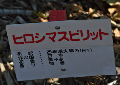 Hiroshimaspiritn131014_1048_img_569